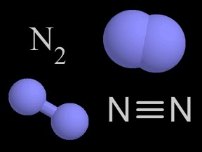 Portal escola ci ncia e cultura o ciclo do nitrog nio for Que significa molecula