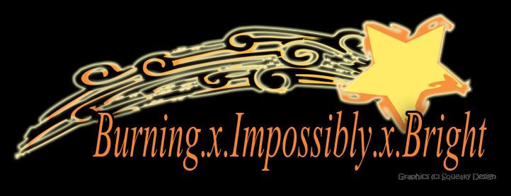 Burning Impossibly Bright Book Blog