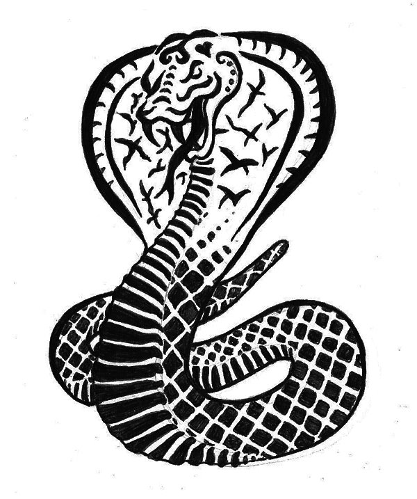 If you love the awesome snake tattoo, you must love the king cobra tattoo!
