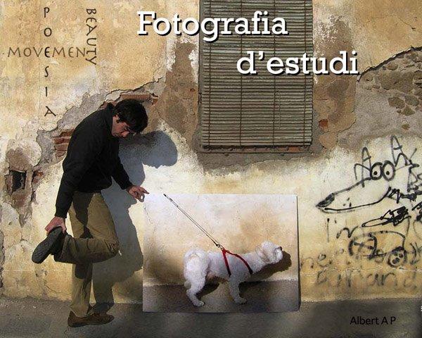 Fotografia d'Estudi