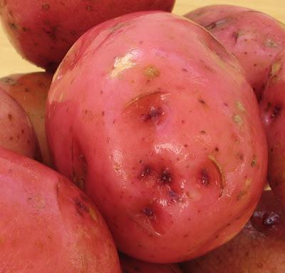 http://1.bp.blogspot.com/_9aQouWAf8Hw/R89izDaLIZI/AAAAAAAABAA/BGzcEUoBwCQ/s400/Oven-roasted+red+potatoes2.JPG