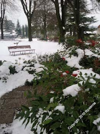 Giardini innevati a Gradisca d'Isonzo