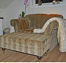 Godstolen i stuen
