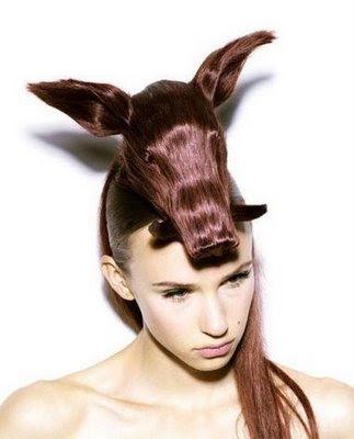 Strange Hairstyles