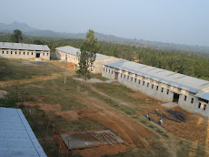 My Mechanical Department