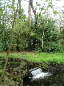 A weir on the The Fleet just below Flixton Decoy