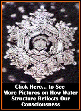 DR. EMASARU EMOTO'S WEBSITE...Buy Books, DVD's