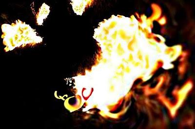 La lluita entre el foc i el buit (Esmeralda Vallverdú)