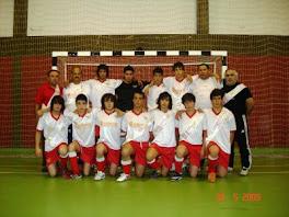 Campeões Distritais de Juvenis A.F.Viseu 08/09