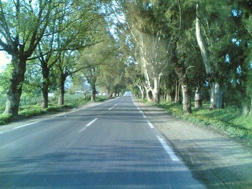 مدينة سكيكدة الجزائرية 7842718