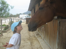COMUNICATING WITH MY HORSE