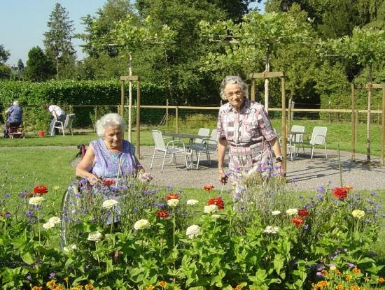 Ville hybride un jardin th rapeutique pour patients for Jardin therapeutique