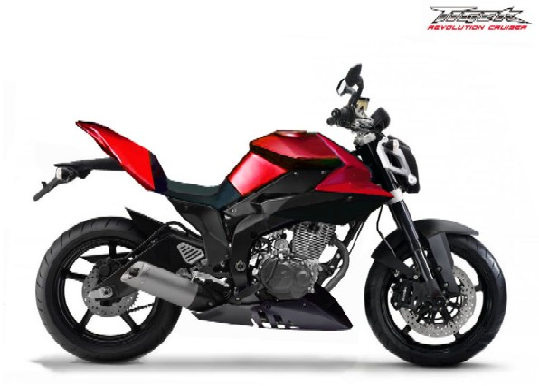 Honda Tiger Modification 2010