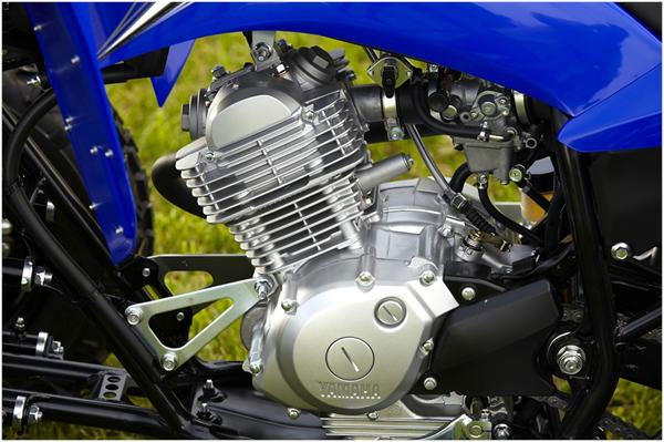 2011 Yamaha Raptor 125 Engine View