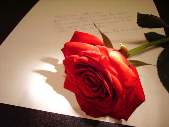 Uma carta para voc�