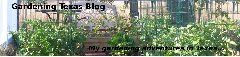 Gardening Texas Tips and Tricks