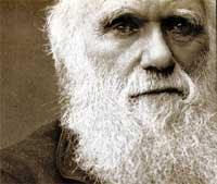 Darwin Face