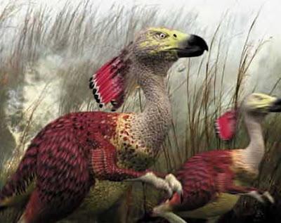 pássaro terrestre animais do futuro evolução