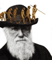 Darwin Evolução Humana Human evolution
