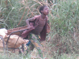 Boy pullin a wheel barrow