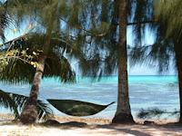 Camping Nelson beach