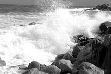 Cabo San Lucas 2007