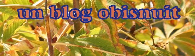 un blog obisnuit