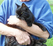 BLACKIE        1984-2006