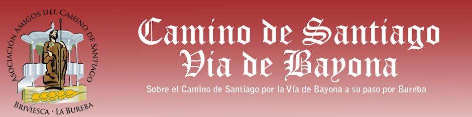 Camino de Santiago:  Via Bayona Bureba