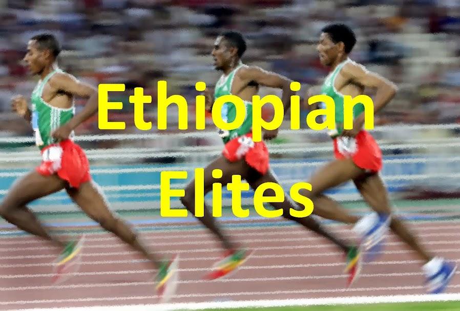 Ethiopian Elites