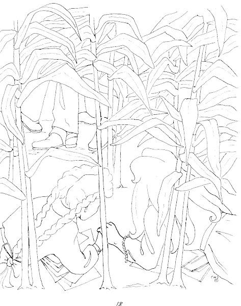 Hide in the Corn field