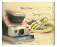 Grab Your Camera and Join Harriet for Shadow Shot Sunday