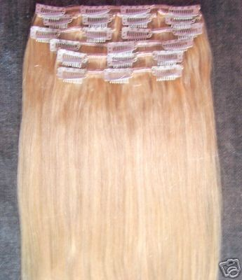 Be Gorgeous Hair Extensions 65