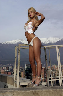 imagenes sexi las mas sexis mujeres mas guapas mujeres sexis en bikini  Fotos de modelos Argentinas Jesica Cirio