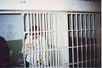Alcapone en Alcatraz