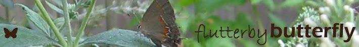 flutterbybutterfly on www.flutterbyfoto.com