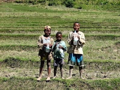 The children of bevohazo