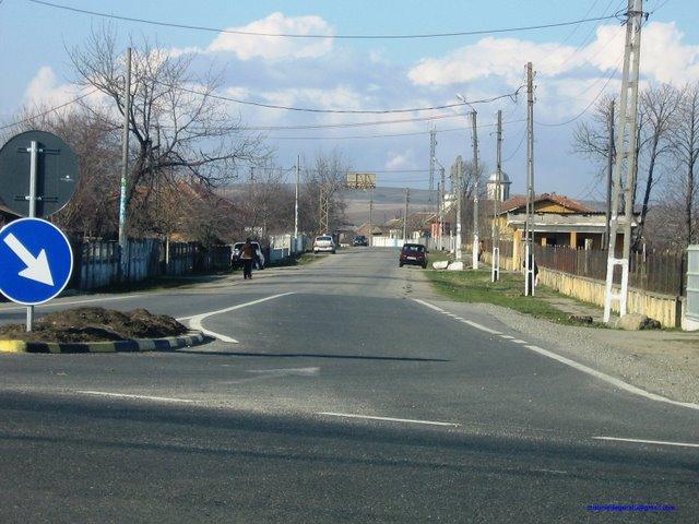 Drumul Judetean 562 A spre Livezile