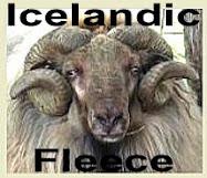 Ingleside Icelandics