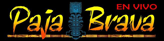 PAJA BRAVA bolivian music folklore