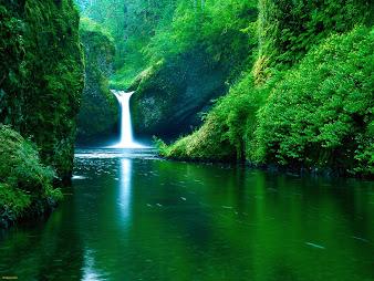 #17 Waterfall Wallpaper