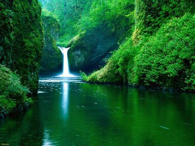 NATURAL WALLPAPER: Snow and Waterfalls