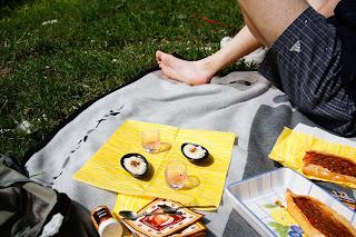 piknik picknick dechsendorfer weiher