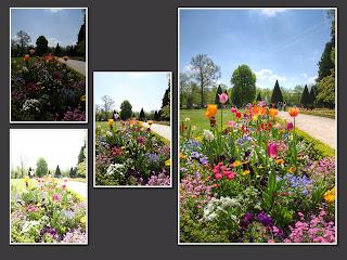 hdr suli würzburg residenz garten blumen virág rezidencia kert