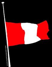 Banderas a media asta... hasta encontrar toda la verdad y hacer justicia!