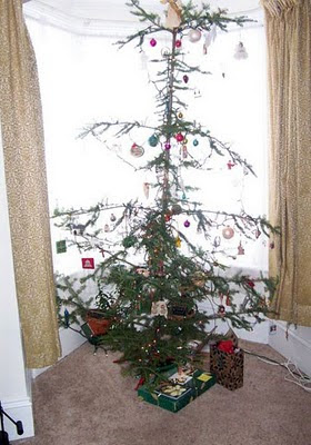 my nice wee Christmas Tree