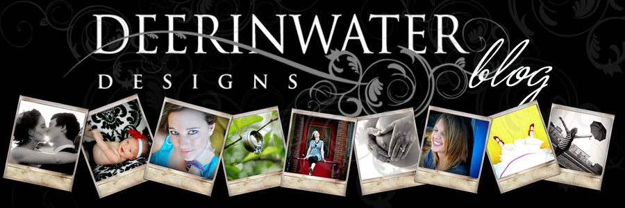 Deerinwater Designs Blog