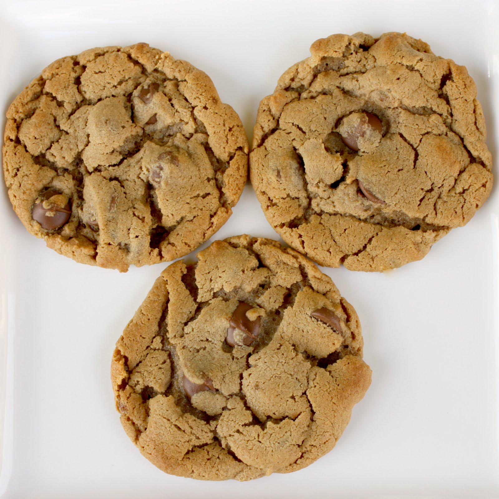 ... forever!: 5 ingredient Peanut butter, chocolate chip cookies, YUM