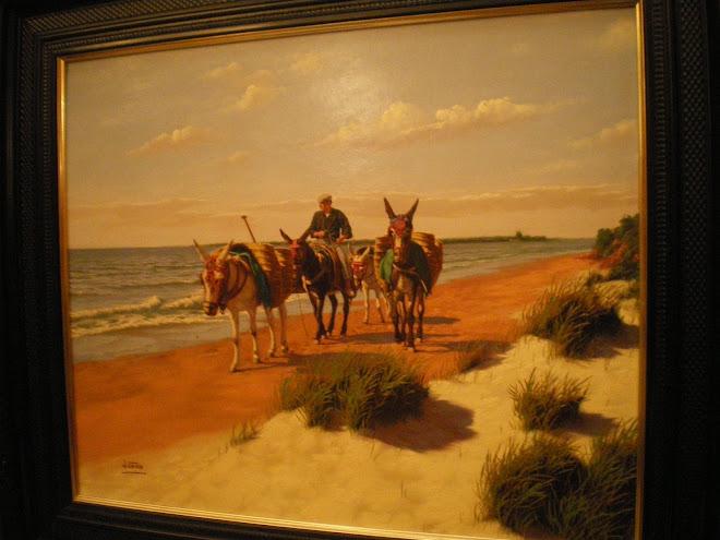 burros por la playa