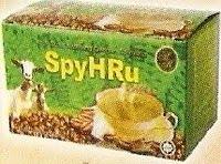 SpyHRu